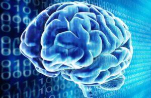 Режим мозга