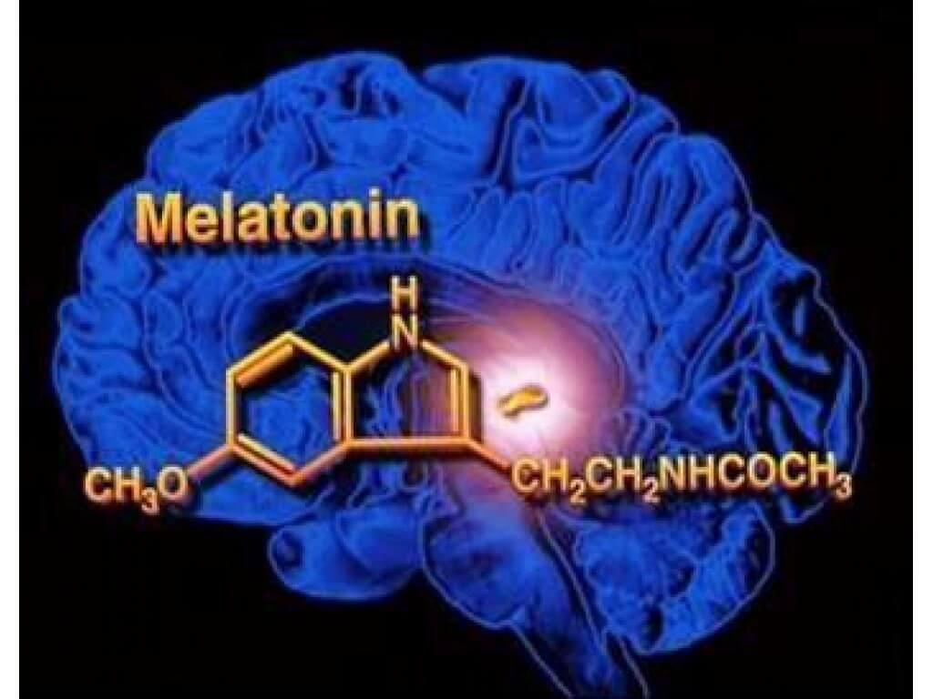 Мелатонин зачем