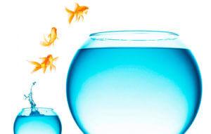 Как перестать плавать в собственном негативе