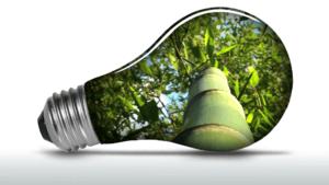 Одиннадцать поглотителей нашей энергии