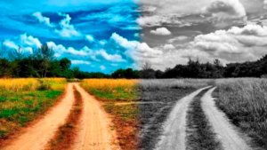 Путь любви и путь страха