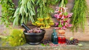 Противопаразитарные растения