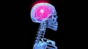 Упражнения для стимуляции работы головного мозга