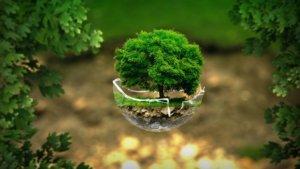 Экологичные способы проживания эмоций