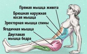 Всего одно упражнение, чтобы сжечь жир и исправить осанку 1