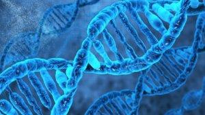 Российские ученые перепрограммировали ДНК человека