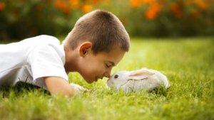 Вы учите детей отвечать за свои поступки?
