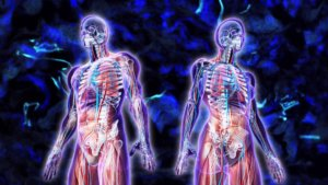 Как на уровне тела поменять жизнь