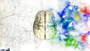 Кинезиологические упражнения для развития мозга