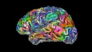 Нейробиолог о тщеславии родителей